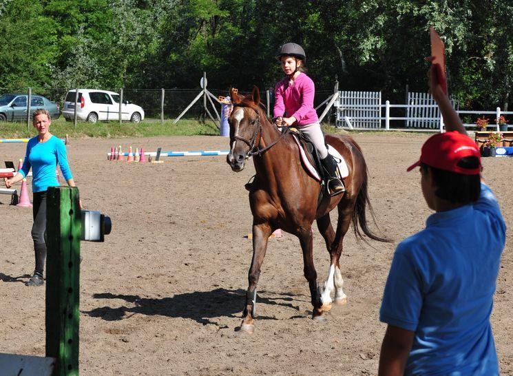 2016. Augusztus 6-án szabadidős és amatőr lovasverseny!
